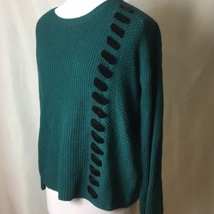 NWOT green sweater with velvet details